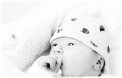 Le dbut de la vie (Marc.Labiche) Tags: baby pregnant newborn bb nouveaun