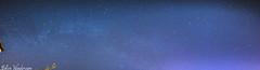 Stars an Milkyway (raven fandango) Tags: uk blue england sky nature night yard canon garden dark way stars photography eos back backyard long exposure 14 astro astrophotography aurora april astronomy 24mm stevenage milky astrology hertfordshire panaramic panarama milkyway herts 2016 samyang 70d