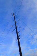 Power Lines (gec21) Tags: newzealand panasonic nz napier hawkesbay 2015 dmctz20