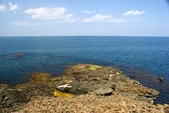 nceburun Deniz Feneri (Efkan Sinan) Tags: lighthouse trkiye turquie trkei blacksea tr turchia sinop denizfeneri batkaradeniz inceburun trkiyeninkuzeyucu