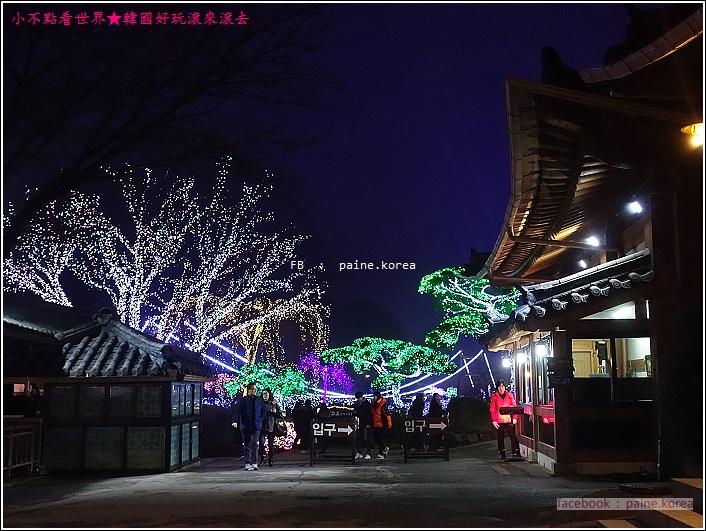 晨靜樹木園 五色星光庭園展 (1).JPG