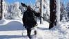 Me (Donald Palansky Photography) Tags: winter people sony tripod blueskies alpha gitzo tamrac meandmycamera donaldpalansky sonyslta99v