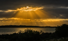 sunrise over yangie bay at coffin bay NP, south australia (Russell Scott Images) Tags: eyrepeninsula southaustralia sunrise yangiebay coffinbaynationalpark sunrays crepuscular rays sunlight russellscottimages