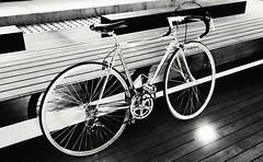 Old road bike (estebaniafrancesco) Tags: southamerica bicycle colombia bogot bicicleta ciclismo suramrica universidadnacionaldecolombia dosruedas oldroadbike ilovebicycles