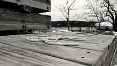 #coldspringharbor (josma01) Tags: coldspringharbor
