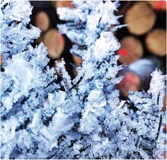 Ice Crystals II (kaleidoskopspeicher) Tags: mountain ice outdoor berge cristal ontour eiskristalle icecristals