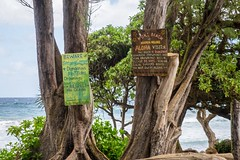 20160106 066 Maui Koki Beach (scottdm) Tags: travel usa hawaii us unitedstates january maui hana hi kokibeach roadtohana 2016