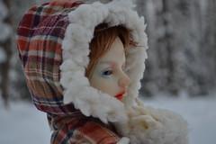 Боярыня (Colibry Julia) Tags: sd bjd amelia abjd dollzone