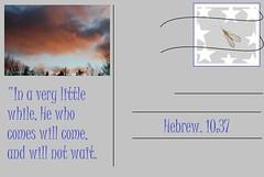 Will not wait (Jouni Niirola) Tags: god jesus will come wait comes yeshua gud jeesus jumala