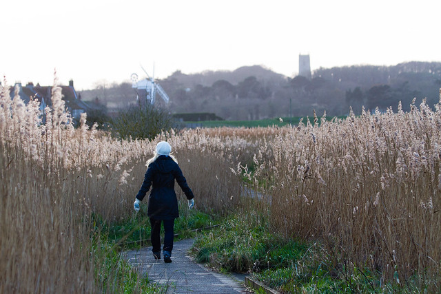 Walk in the marsh