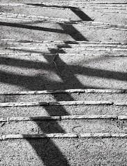 Stairway & shadows 2 (photodesignette) Tags: treppe schatten abstrakt treppenstufen