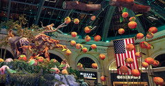 Chinese New Year (Monkey)_stitch (Swallia23) Tags: las vegas flowers money hotel peach chinesenewyear casio nv bellagio yearofthemonkey 2016 conservatorybotanicalgarden