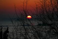 P1000109 February sunset (omersad) Tags: sunset sea moda istanbul marmara panasoniclumix fz1000