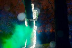 hold me tight (christophhornung142) Tags: red green rot art colors yellow fog night licht nebel purple nacht sony illumination gelb mann grn blau farbe bume mannheim violett luisenpark langebelichtung strucher winterlichter sonyalpha6000 stimmunglichtknstler