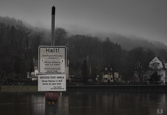 foggy day (MrHansFromSomewhere) Tags: fog analog germany sony rainy adapter m42 niedersachsen lowersaxony hameln 2016 tessar carlzeissjena sonyalpha a6000 legacyglass carlzeissjena50mmf28tessar sonyimages ilce6000