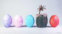 Eggs (3rd-Rate Photography) Tags: food canon easter toy 50mm florida alien jacksonville hardboiled hrgiger facehugger neca xenomorph toyphotography 5dmarkiii earlware 3rdratephotography