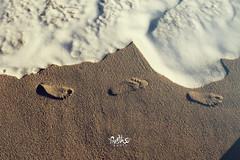 huellas (betho itinerante) Tags: color textura luz sol atardecer mar agua sombra playa dia arena ritmo calor espuma relieve huellas secuencia efmero