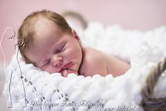 newborn-fotografie-baby-wendy-van-kuler-hilversum-20151202-8130 (Wendy van Kuler) Tags: baby babys meisje ecru babyfotografie newbornfotografie newbornfotografiewendyvankuler 2015120424