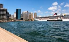 Downtown Sydney Skyline (chasingthelight10) Tags: travel photography landscapes events sydney cityscapes australia places operahouse harborbridge