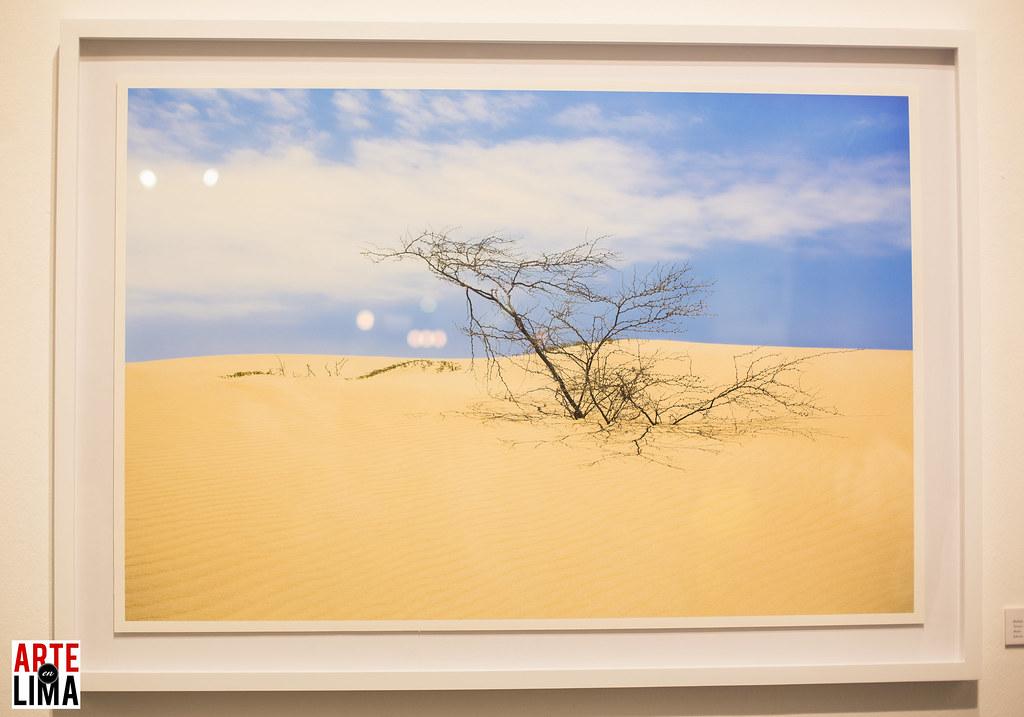 """""""COSTA DIFUSA"""" de Eddy Espinoza en la Galería Indigo."""