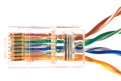Twisted Pairs (lenswrangler) Tags: macro wire internet twist plug network ethernet twisted rj45 digikam twistedpair 568b macromonday rawtherapee lenswrangler
