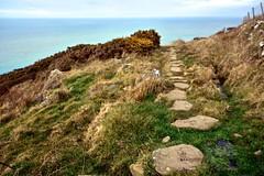 Round Wales Walk 29 - Stepping Stones (Nikki & Tom) Tags: uk sea wales coast steppingstones bog walescoastpath