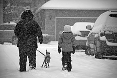Walking in the Snow (pete4ducks) Tags: family winter blackandwhite dog snow cars animal oregon emily beaverton ruby evie evangeline 2014 sextonmountain sextonmountainmeadows on1photos on1pics