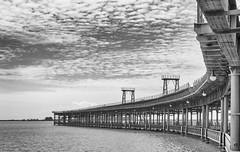 Muelle Ro Tinto 2. Huelva (jsanchezq65) Tags: blancoynegro puerto muelle riotinto huelva construccion estructira
