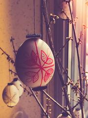 Easter Eggs (ildikoannable) Tags: easter spring egg lightleak happyeaster paintedeggs