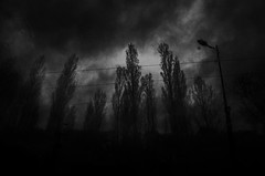 . (Izabella Nowak) Tags: road trees sky dark dream wather bureboke izabelanowak