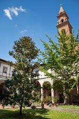 Firenze (el gato negro loco) Tags: trip vacation italy sun holiday landscape fun happy florence spring italia journey land firenze viaggio