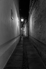 Callejon de noche (Eduardo Estllez) Tags: espaa flores blancoynegro vertical monocromo noche casa calle arquitectura farola andalucia via farol historia antiguo solitario oscuro andaluz nadie callejon tipico cascoantiguo calleja condoba eduardoestellez estellez