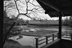 Serenity (mrParinya.V) Tags: blackandwhite bw japan temple blackwhite pond 28mm m summicron serenity mei ise bnw 240 leicam edition60