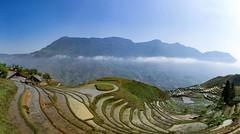 Sa Pa rice terrace (Josh Hickinbotham) Tags: mountains rice terraces vietnam fields sapa