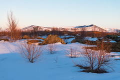Hverfjall volcano in Myvatn during sunset (Goldsaint) Tags: travel winter light sunset plants mountain snow cold tree tourism ice nature landscape volcano is iceland scenery outdoor north crater summit geography northeast volcanic myvatn goldenhour hverfjall geological
