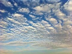 Nature (Kourni Tinoco) Tags: life sky art nature wow couple lovely1 best mundial sensations sensaciones kournitinoco seeyouall koudlam httpsyoutuber2lqdh42neg httpsyoutubezuidh4xizxu httpsyoutubecmoaxm94vwo httpsyoutubei3atrblrqi