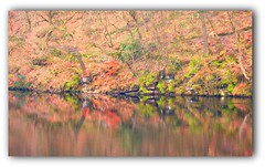 """Agden reservoir """"Explored"""" (A tramp in the hills) Tags: reflections colours reservoir bradfield agden southyorkshire"""