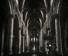 Gotik II (darkstyle.pictures) Tags: church nikon kirche monochrom gotik sintmichielskerk darkstyle