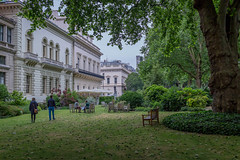 Open Garden Squares 2015 - 1829.jpg (DavidRBadger) Tags: city london greenspace planetree 2015 cityofwestminster londonplanetree urbansquare opengardensquares carltonhouseterracegarden