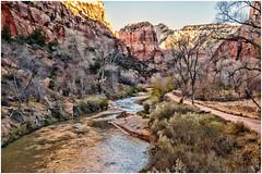 Winter is Coming (BlueberryAsh) Tags: winter usa river landscape utah nationalpark nikon rocks outdoor canyon zionnp virginriver zionnationpark nikond600 usa2013