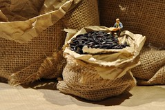 macro mondays *bag* (giancarlo_darrigo) Tags: macro bag miniature rice figurine vignette blackrice arroz riso hoscale preiser macromondays
