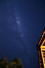 Split the Sky (sumehrgwalani) Tags: trees stars outdoor astrophotography nightsky milkyway