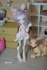 Sucette <3 (dweina/lucilia) Tags: rabbit bunny doll dolls handmade bjd lapin depths balljointeddoll bjddoll giorria balljointedball bjdartist letama depthsdolls