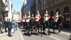 queen,s lifeguards-household cavalry mounted regiment-freedom of the city of london parade 20 04 2016 (3) (philipbisset275) Tags: unitedkingdom centrallondon queenslifeguards englandgreatbritain householdcavalrymountedregiment 20042016