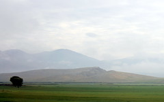 morning fog on the way to pamukkale (2) (kexi) Tags: morning sky mountains tree fog clouds canon turkey pastel may layers 2015 instantfave
