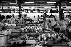 Dubai, UAE - Fish (Regan Gilder) Tags: bw fish canon blackwhite waiting dubai uae knife arabic arab scales tuna fishmarket unitedarabemirates fishmonger patience arabiangulf persiangulf canoneos5dmarkiii deirafishmarket cornichedeira