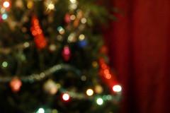 Julukuusk (Jaan Keinaste) Tags: christmas estonia olympus colored eesti sh1 julud vrviline julukuusk