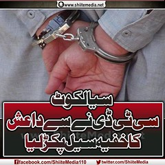 8         .            http://www.shiitemedia.net/ur/index.php/8153 (ShiiteMedia) Tags: pakistan 8 shiite               shianews       shiagenocide shiakilling    shiitemedia shiapakistan mediashiitenews         httpwwwshiitemedianeturindexphp8153shia
