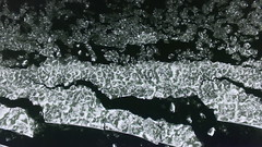 Plate Tectonics (Part 1) (Dan Beland) Tags: winter usa art nature water river frozen unmodified unitedstates artistic freezing slush surface idaho northamerica rockymountains flowing fractals salmonriver darkwater unedited platetectonics drone icejam iceflows quantumphysics highway93 nofilters noadjustments dji straightoffthecamera salmonidaho quadcopter lemhicounty darkgreenwater phantom3professional slushblooms