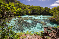 21112015-DSC_5880 (ciol46) Tags: island aquarium ile nouvellecaldonie newcaledonia caledonia mar loyalty naturel caldonie loyaut